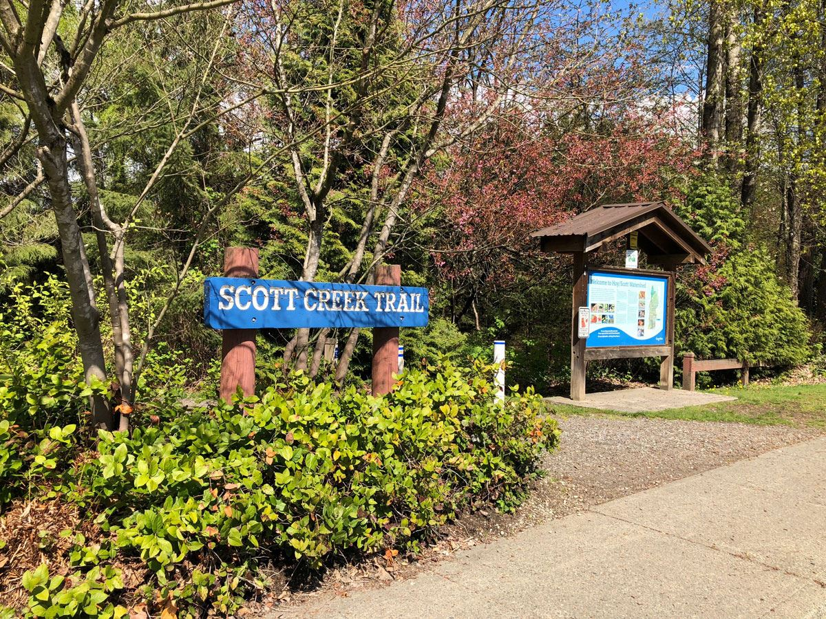 Scott Creek Linear Park