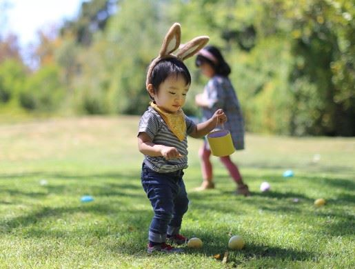Boy Hunting for Easter Eggs